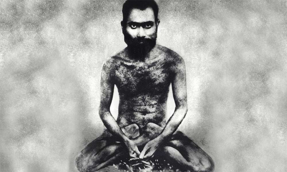 Bilva——Shiva的奉爱者