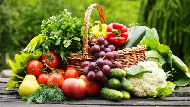 萨古鲁:为什么要选择素食?