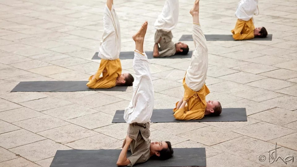 瑜伽体式——与宇宙相校准