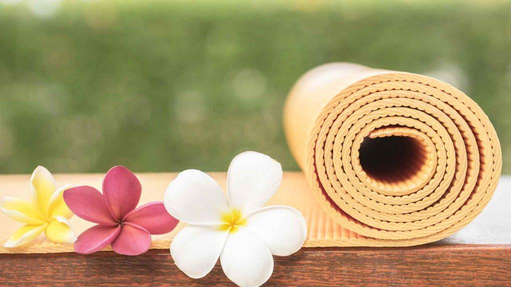 瑜伽初学者指南丨《正本清源——还瑜伽本来的面目》