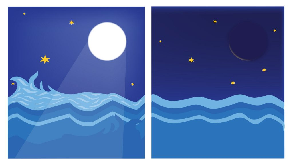 满月日和新月日有何区别?