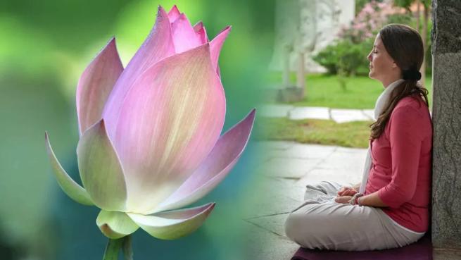 瑜伽初学者指南丨《什么是灵性?瑜伽和灵性有什么关系?》