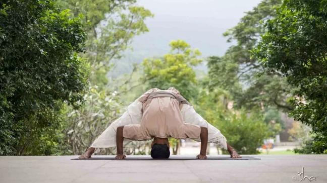 哈他瑜伽——如何关照身体的薄弱点?