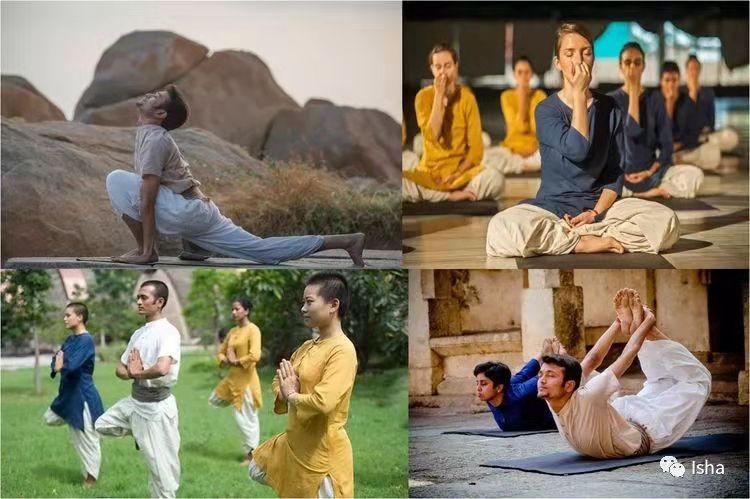 Isha哈他瑜伽教师培训随笔(一)丨2018年8月