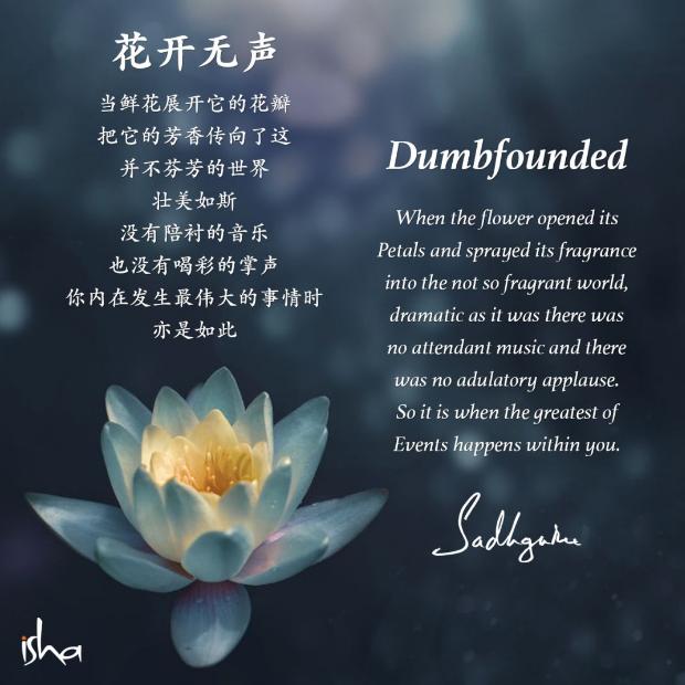 瑜伽士的诗丨《花开无声》