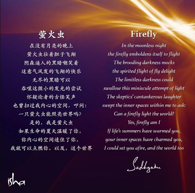 瑜伽士的诗丨《萤火虫》