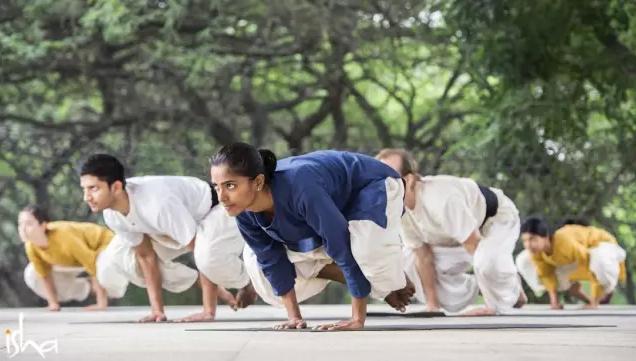 哈他瑜伽丨一条通往终极自由的道路