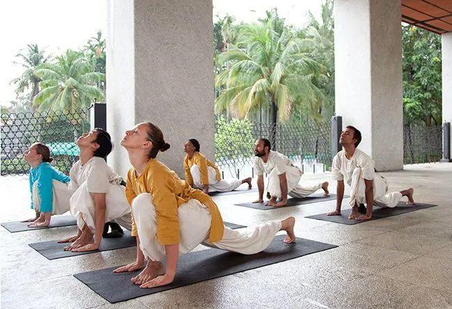 Isha分享丨我的瑜伽之旅
