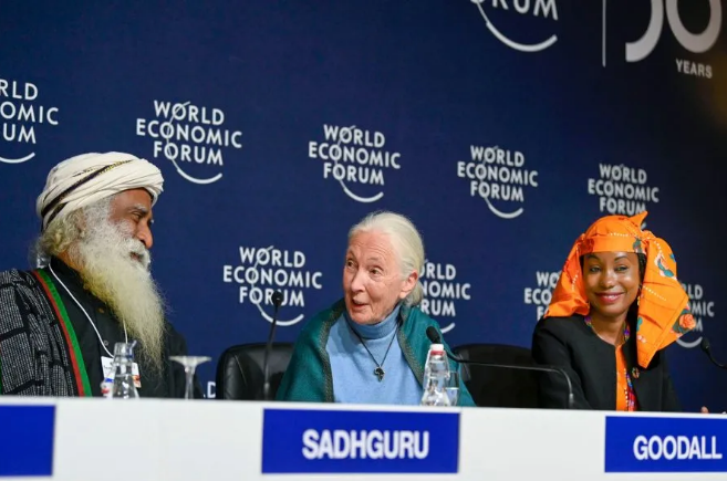 萨古鲁在世界经济论坛丨媒体向萨古鲁提问的八个重要问题(一)