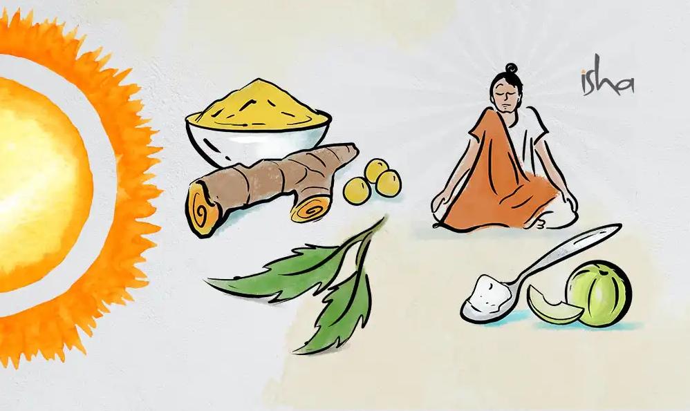 萨古鲁:增强身体免疫力的17条建议(完整版)
